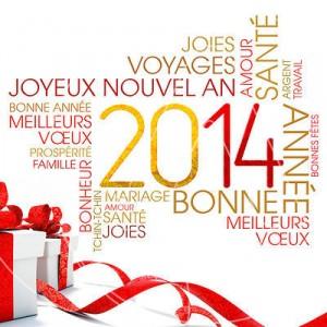CARTE DE VOEUX 2014 - textes souhaits vÏux 2014